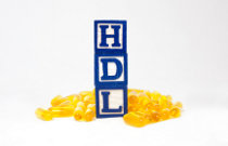 hdl-gutes-cholesterin